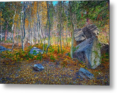 Metal Print featuring the photograph Aspen Grove by Jim Thompson