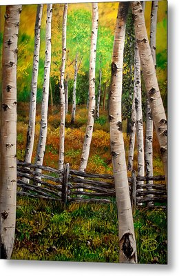 Aspen Meadow Metal Print by Jessica Tookey