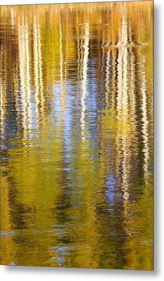 Metal Print featuring the photograph Aspen Reflection by Kevin Desrosiers