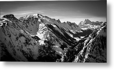 Aspen Winter Metal Print