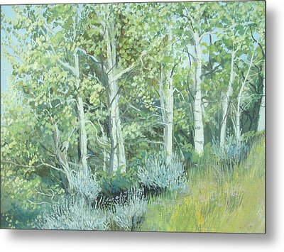 Aspens Of Medicine Bow Metal Print