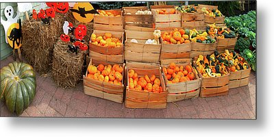 Assorted Gourds And Small Pumpkins Metal Print