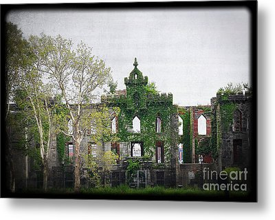 Metal Print featuring the photograph Asylum Growth by Paul Cammarata