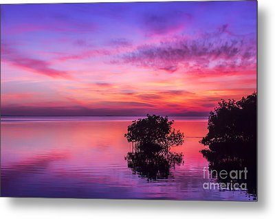At Days End Metal Print by Marvin Spates