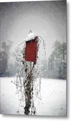 At Home In The Snow Metal Print