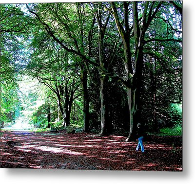 Metal Print featuring the photograph At Peace With Nature by Charlie Brock