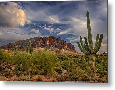 At The Base Of The Mountain Metal Print by Saija  Lehtonen
