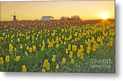 Metal Print featuring the photograph At The Crack Of Dawn by Nick  Boren