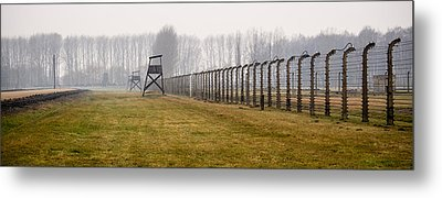 At The Fence Metal Print