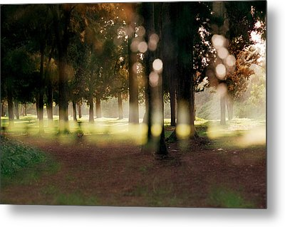Metal Print featuring the photograph At The Yarkon Park Tel Aviv by Dubi Roman