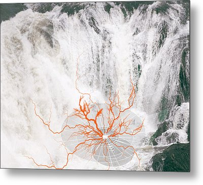 Ater Metal Print by Valerie Wolf