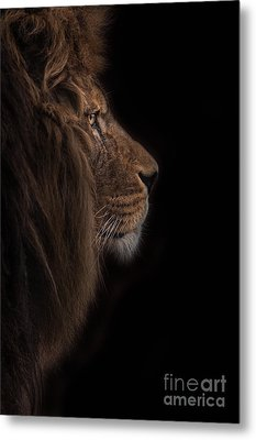 Atlas Burdened No More Metal Print by Ashley Vincent