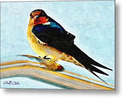 Attitude In Nature Metal Print by Geoff Childs