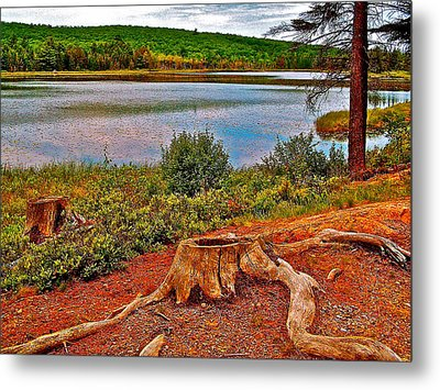 Aunt Betty Pond In Acadia National Park-maine  Metal Print by Ruth Hager