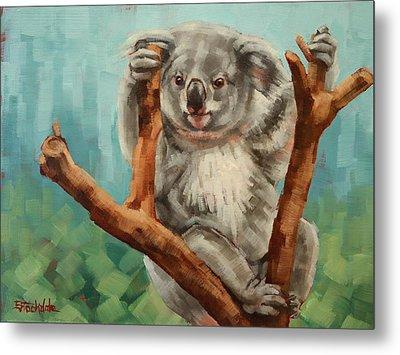 Australian Koala Metal Print