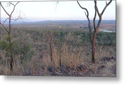 Metal Print featuring the photograph Australian Outback by Tony Mathews