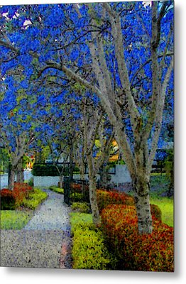 Australia's Blue Blossoms Metal Print by Lenore Senior and Constance Widen