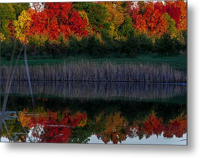 Autum At Orchard Pond Metal Print by Gene Sherrill