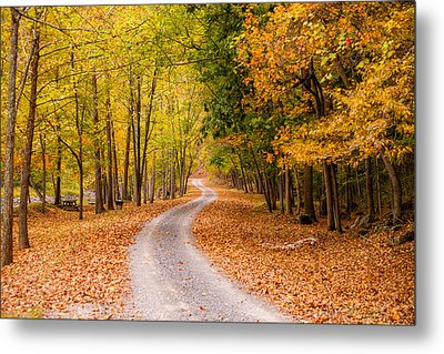 Autum Path Metal Print by Melinda Ledsome