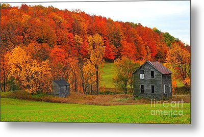 Metal Print featuring the photograph Autumn Abandoned by Terri Gostola