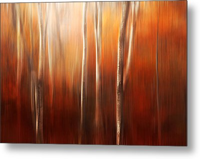 Autumn Abstract Metal Print by Magda  Bognar