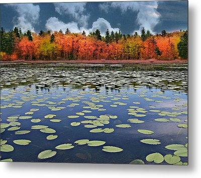 Autumn Across The Pond Metal Print by Barbara S Nickerson
