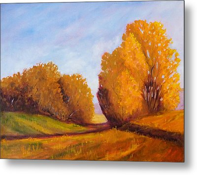 Autumn Afternoon Metal Print by Nancy Merkle