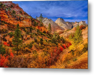 Metal Print featuring the photograph Autumn Arroyo by Greg Norrell