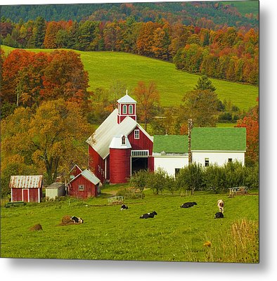 Autumn At Bogie Mountain Dairy Farm Metal Print