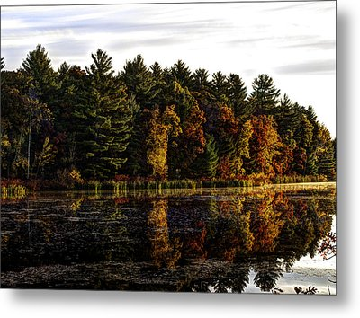 Autumn At It's Finest 2 Metal Print by Thomas Young