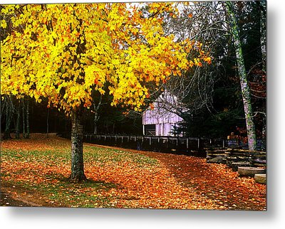 Metal Print featuring the photograph Autumn At Old Mill by Rodney Lee Williams