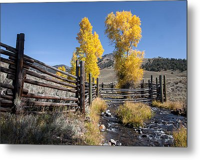 Metal Print featuring the photograph Autumn At The Lamar Buffalo Ranch by Jack Bell