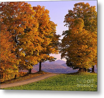 Autumn Backroad View Metal Print by Alan L Graham
