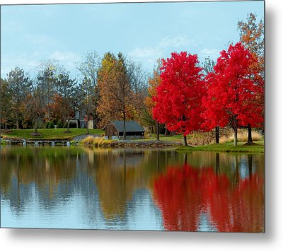 Autumn Beauty On A Pond Metal Print
