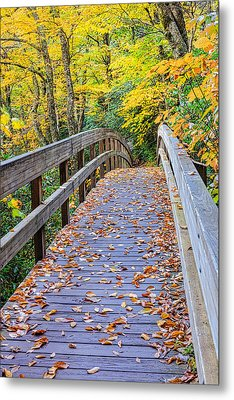 Coaxing - Autumn Bridge Metal Print by Carol VanDyke