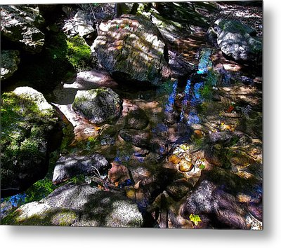 Autumn Brook 88 Metal Print