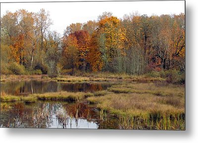 Autumn Changes  Metal Print by I'ina Van Lawick