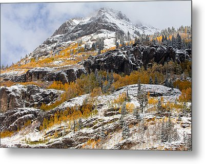 Autumn Clearning Metal Print by Darren  White