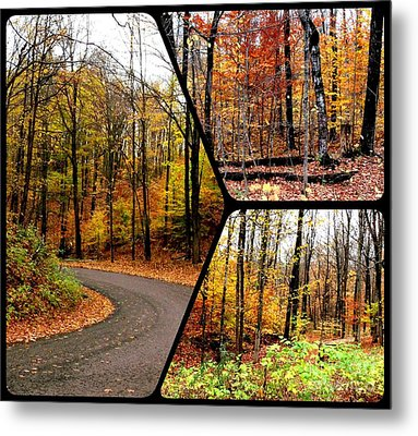 Autumn Collage Metal Print by Gail Matthews