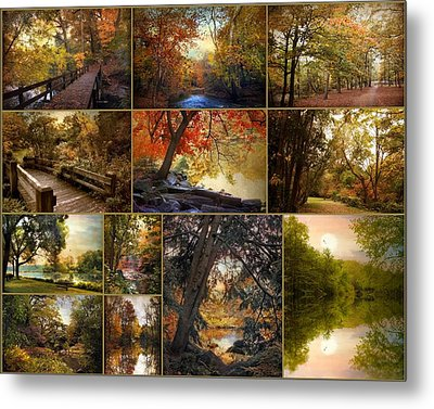 Autumn Collection Metal Print