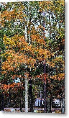 Autumn Colors Metal Print by Carolyn Ricks