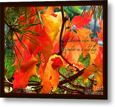 Metal Print featuring the photograph Autumn Colors by Heidi Manly