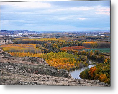 Autumn Colors On The Ebro River Metal Print by RicardMN Photography