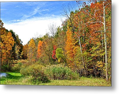 Autumn Colors Metal Print by Frozen in Time Fine Art Photography