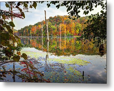 Autumn Colors Through The Trees On Monksville Reservoir - Long Pond Ironworks State Park Metal Print by Gary Heller