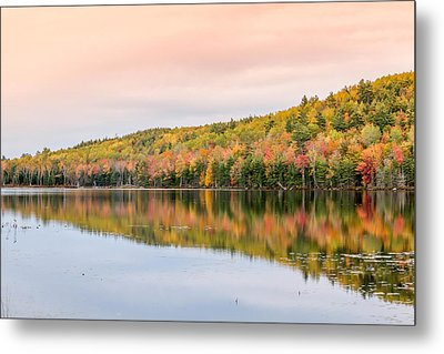 Metal Print featuring the photograph Autumn Colors  by Trace Kittrell