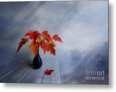 Autumn Colors Metal Print by Veikko Suikkanen