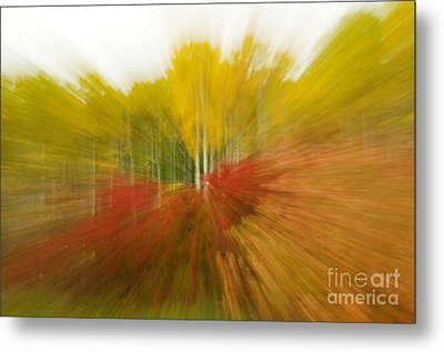Autumn Colors Metal Print by Vivian Christopher