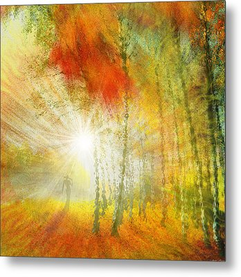 Autumn Colours Metal Print by Igor Zenin