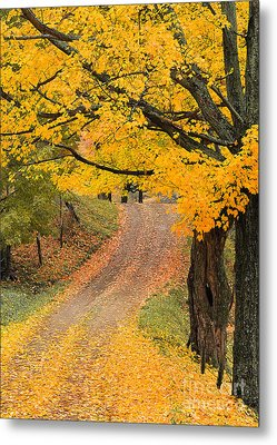 Autumn Country Road Metal Print by Alan L Graham